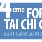 """Banderole 1 x 4 m, """"Forum Cheng Man Ching"""". Foix, 2010."""